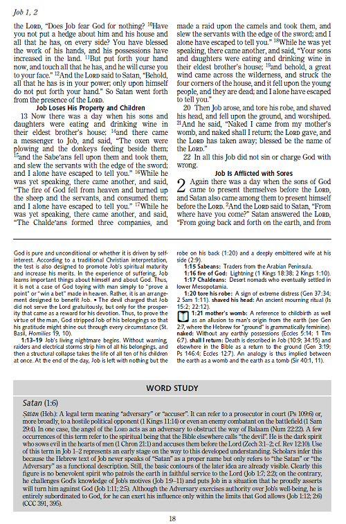 The Ignatius Catholic Study Bible Collection 6 Vols Verbum