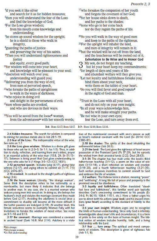 Song of solomon dating texas teaching